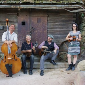 Ventucky String Band - Bluegrass Band in Ventura, California