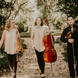 Vermilion Strings - String Trio in Lafayette, Louisiana