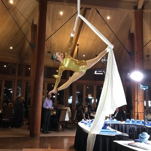 Vertical Fix - Aerialist / Contortionist in Phoenix, Arizona