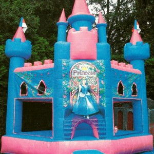 Village Idiotz - Party Inflatables in Manchester, New Hampshire