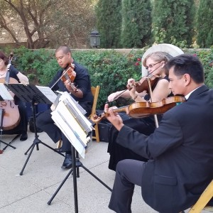 Vintage Strings - String Quartet / Wedding Musicians in San Diego, California