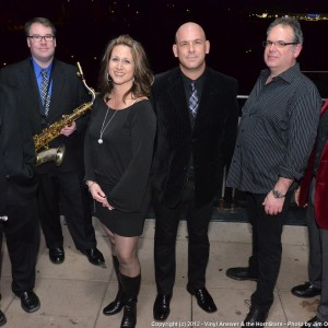 Vinyl Answer & the Hornstars - Cover Band in Westmont, Illinois