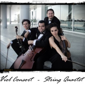 Viol Consort String Quartet - String Quartet / Violinist in San Antonio, Texas