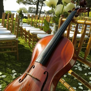 Viola Dolce - String Quartet / Wedding Entertainment in Montreal, Quebec