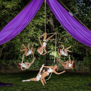 Violet Crown Collective, LLC - Circus Entertainment / Trapeze Artist in Austin, Texas