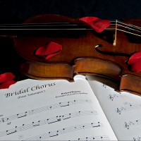 Campbell Studio - Violinist in Virginia Beach, Virginia