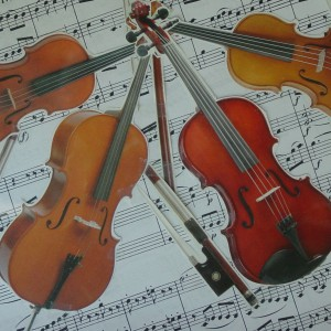 ViolinDoc - Violinist in Clearwater Beach, Florida