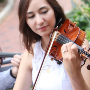 Amanda Gentile, Violinist - Violinist / String Quartet in Charlotte, North Carolina