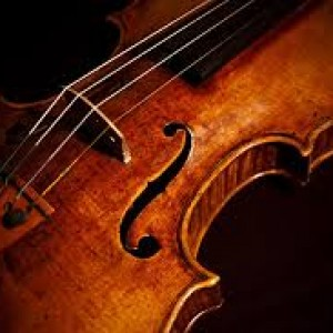 Violin/Viola - Violinist / Wedding Entertainment in Tacoma, Washington