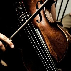 Violist at Your Service - Viola Player in Des Plaines, Illinois