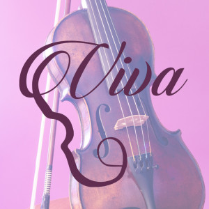 Viva la Strings - String Quartet / Harpist in Dayton, Ohio