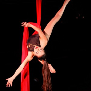 Vivian Tam - Aerialist in Redmond, Washington