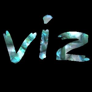 Viz - DJ in Dallas, Texas