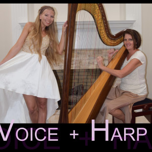 Voice + Harp - Classical Ensemble in Dallas, Texas