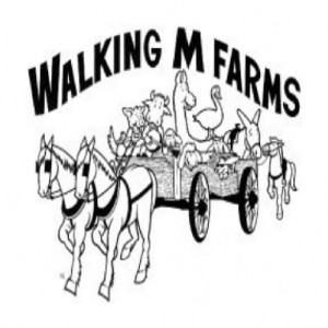 Walking M Farms - Horse Drawn Carriage / Petting Zoo in Mesa, Arizona