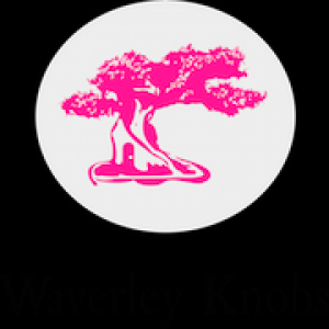 Waverley Knobs Entertainment - Video Services in Boston, Massachusetts