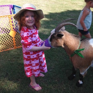 We Bring the Farm to YOU! - Petting Zoo / Outdoor Party Entertainment in Weatherford, Texas