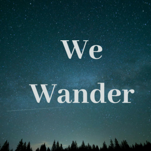 We Wander - Folk Band in Mississauga, Ontario