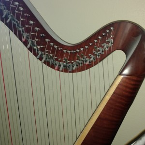 Wedding Harpist - Harpist / Celtic Music in Grand Junction, Colorado