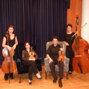 Wedding Musicians - Classical Ensemble / Cellist in Buffalo, New York