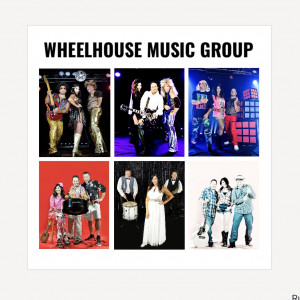 Wheelhouse Music Group - Tribute Band / Caribbean/Island Music in Aurora, Illinois
