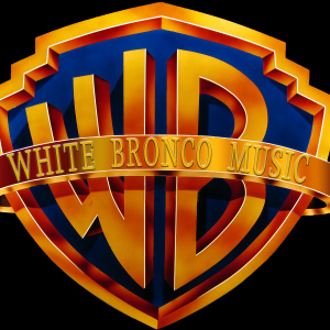 White Bronco - Cover Band in Angola, New York