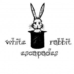 White Rabbit Escapades - Children's Party Entertainment in Nashville, Tennessee