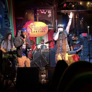 Wi'deya - Reggae Band / Caribbean/Island Music in Houston, Texas