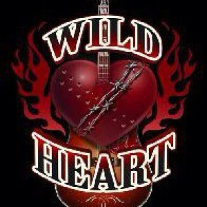 Wild Heart - Classic Rock Band in Luther, Oklahoma