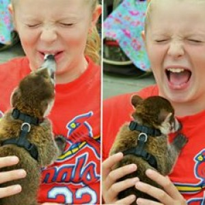 Wild Times Exotics - Petting Zoo / Outdoor Party Entertainment in Springfield, Illinois