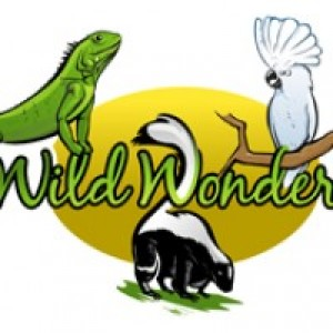 Wild Wonders - Animal Entertainment / Reptile Show in Santaquin, Utah