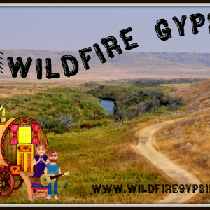 Wildfire Gypsies - Folk Band in Kelowna, British Columbia