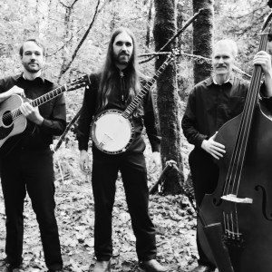 Wildwood Fire - Bluegrass Band in Vancouver, British Columbia