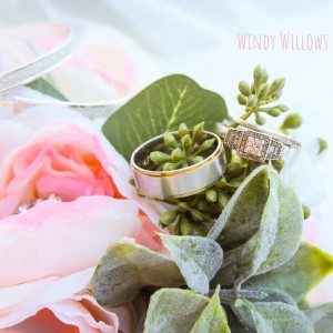 Windy Willows Photography - Wedding Photographer / Wedding Services in Boaz, Alabama