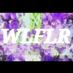 Wlflr - Alternative Band in Jenks, Oklahoma