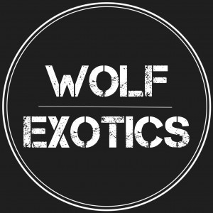 Wolf Exotics - Animal Entertainment in Los Angeles, California