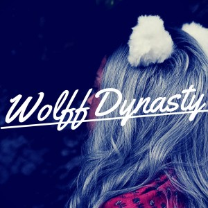 Wolff Dynasty - Dance Band in Miami, Florida