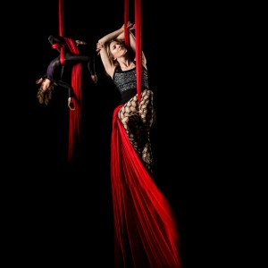 Circus Building Entertainment - Aerialist in Charleston, South Carolina