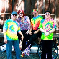 Woodstock Revisited - Tribute Band in Folsom, California