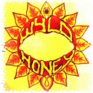 Wyld Honey (band) - Rock Band in Brampton, Ontario
