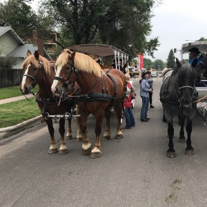 Wyoming Carriages - Horse Drawn Carriage / Holiday Party Entertainment in Cheyenne, Wyoming