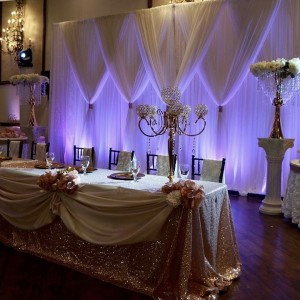 YM Event Rentals - Party Decor / Backdrops & Drapery in Porter, Texas