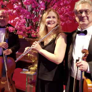 Princeton Music Connection - String Trio / Violinist in Princeton, New Jersey