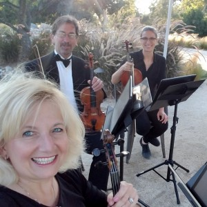 Zene String Quartet - String Quartet / Wedding Entertainment in San Diego, California