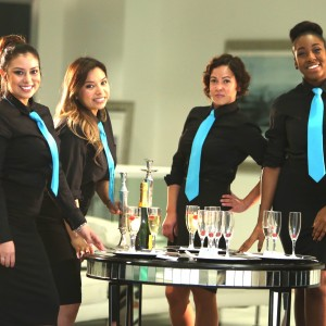 Ziva Staffing LLC - Waitstaff in Miami, Florida