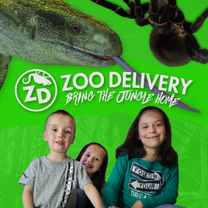 Zoo Delivery - Safari Master Showcase Parties