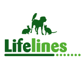 Pets At Home - VIP - Groom Room