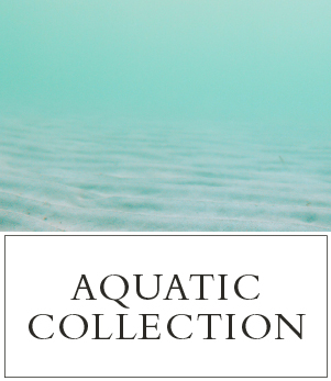 Aquatic Fragrances