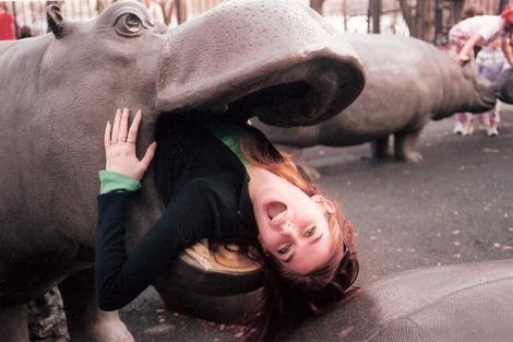 Hippos fucking 2