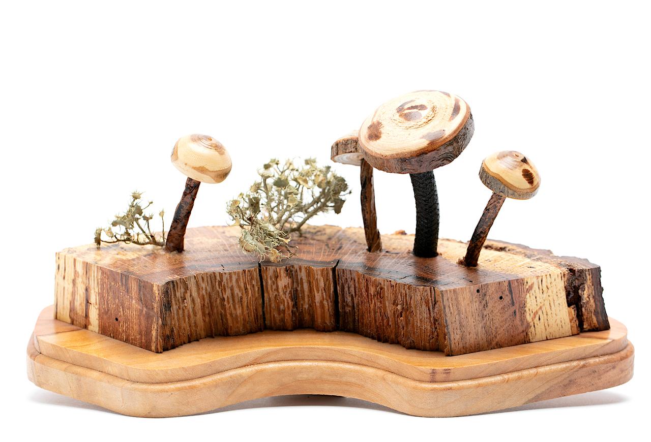 Nature Table Centerpiece
